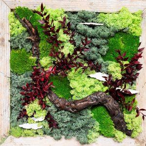Plantschilderijen